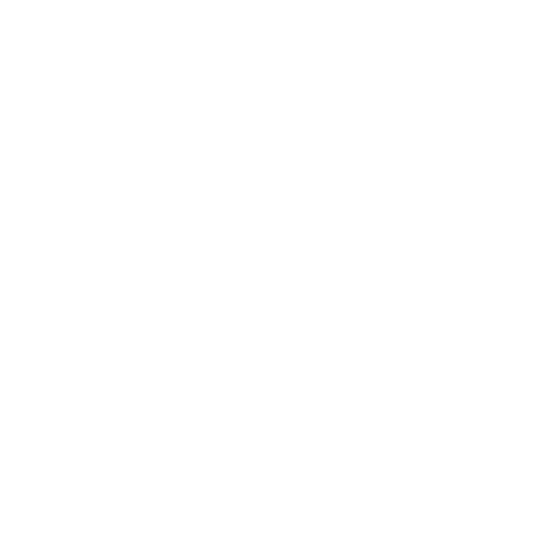 BS_THD_Logo_Primary_wo_themeline_Outline.png